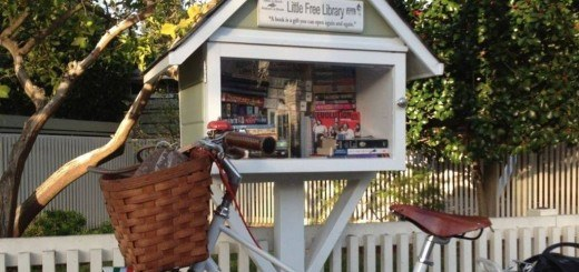 little free libraries headed for bundy