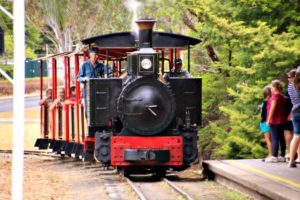 Bundaberg Botanic Gardens Train