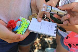 geocaching bundaberg