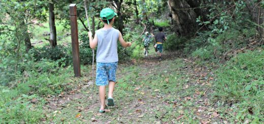 bundaberg nature play