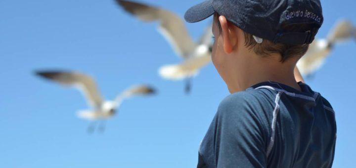 fraser coast school holidays