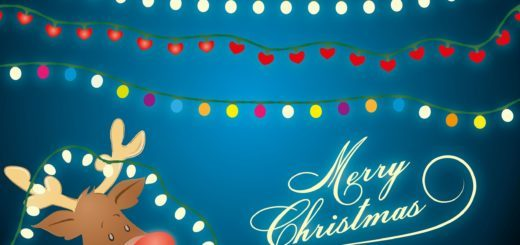hervey bay christmas lights guide 2016