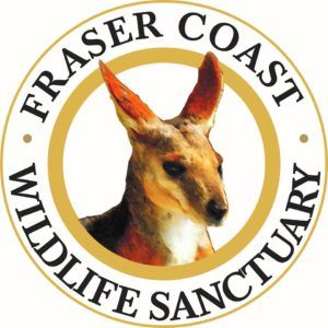 fraser coast wildlife santuary markets