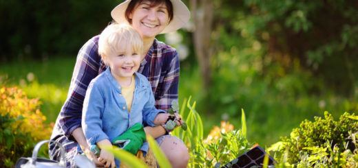 Family Day Care Bundaberg