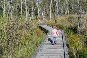 fay smith wetlands maryborough