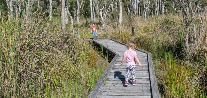fay smith wetlands maryborough