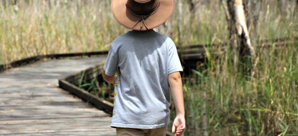 woodgate banksia walking track